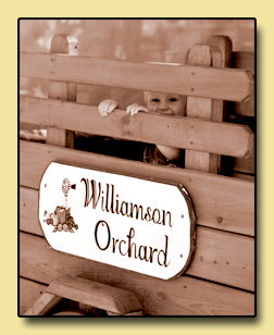 Williamson Orchards and Vineyards